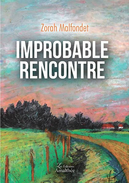 18/11/2017- Improbable rencontre par Zorah Malfondet