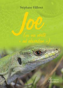 Joe (ou ma vérité ad absurdum)