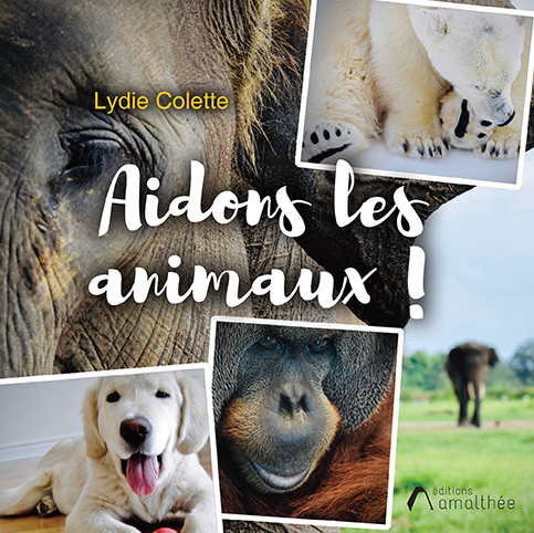 Aidons les animaux !